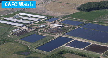 Observing and reporting problem around CAFOs