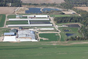aerial view of Medina Dairy CAFO