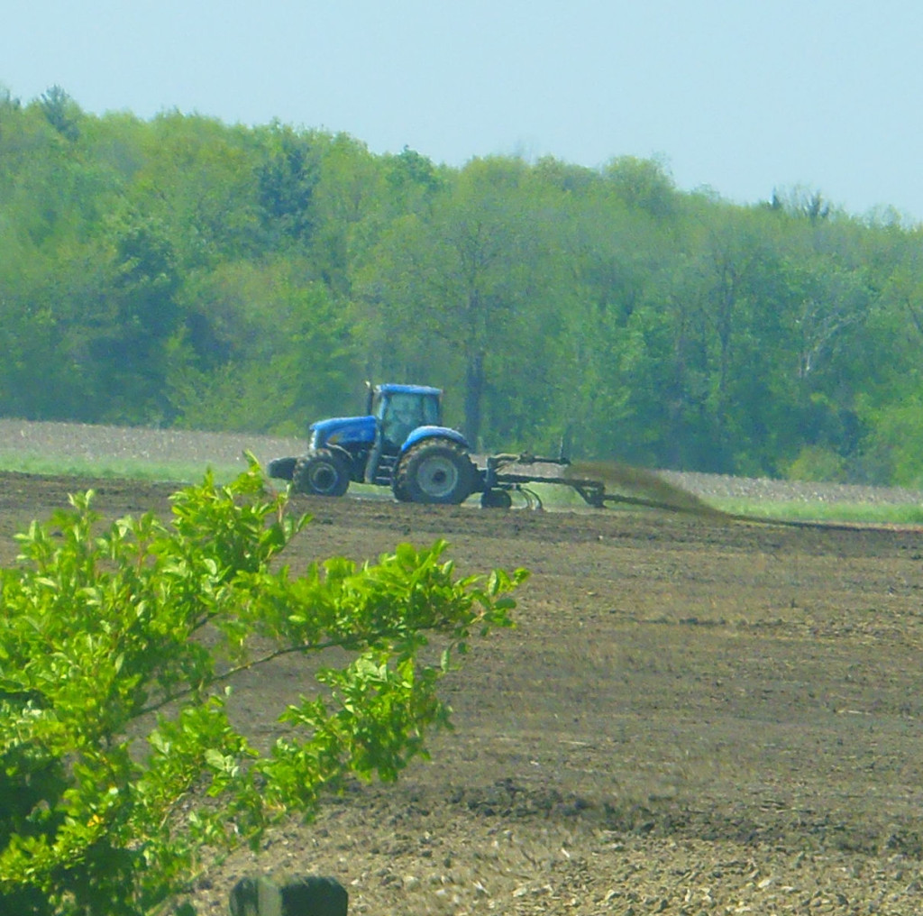 Manure draglining results in stench
