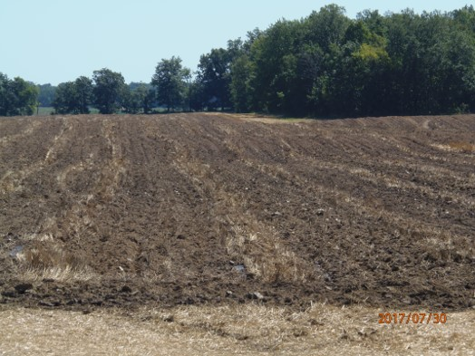 7.30.2017 – Pentecost Hwy. at Wolf Creek (same field, as above a day later). Manure application w/ponding after incorporation. Stench continued, even after incorporation, for several days.