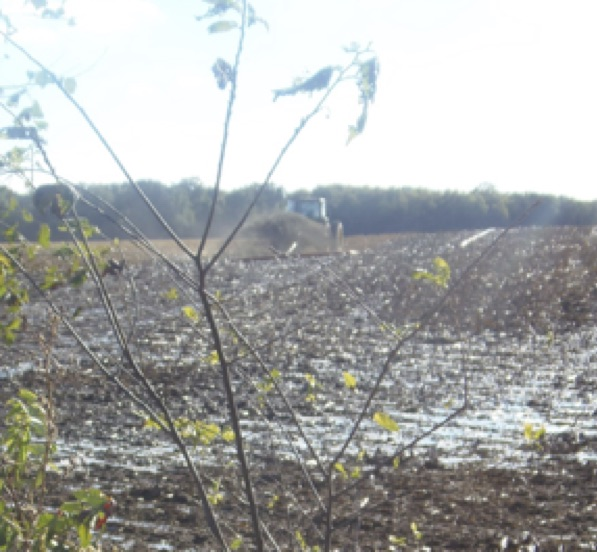 Sept 28, 2017 Hartland dragline manure operation on newly-harvested corn field, SE corner of Hughes Hwy. and Beecher Rd., Hudson Township. (Raisin:Lake Erie watershed)