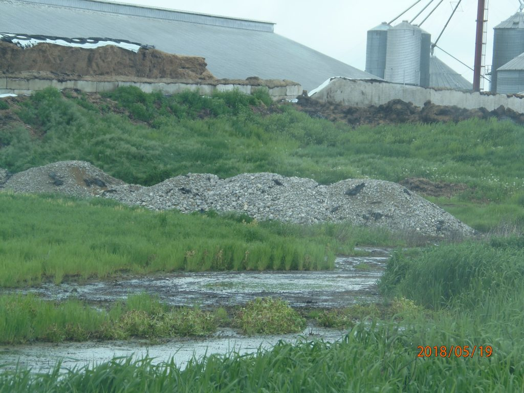 May 19, 2018 – Path of runoff from Warner silage pile, Elton Rd., off of site.