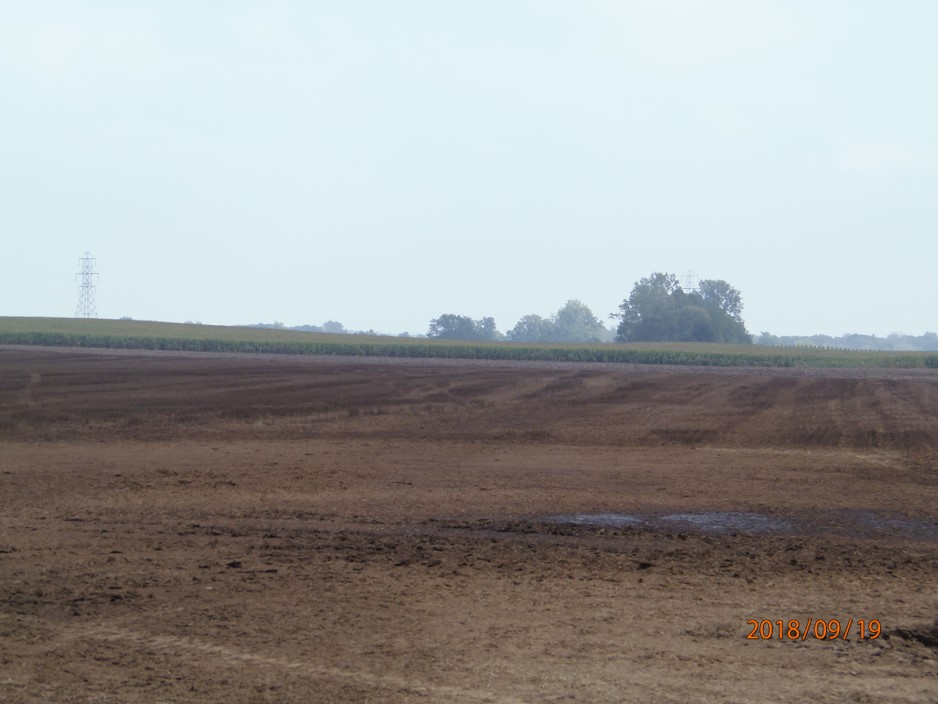 09.29.2018 NE corner of Rome Rd. and Gilbert Hwy. Manure application by NFD/Waterland and possibly others over several days before 9.19.2018. Wolf Creek/Raisin.