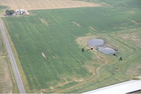 "Bakerlads constructed wetland"", aerial photo July 14, 2018 by ECCSCM:Lighthawk."