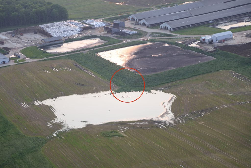 New Flavo Dairy pumped from lagoon ponding around tile riser annotated 2
